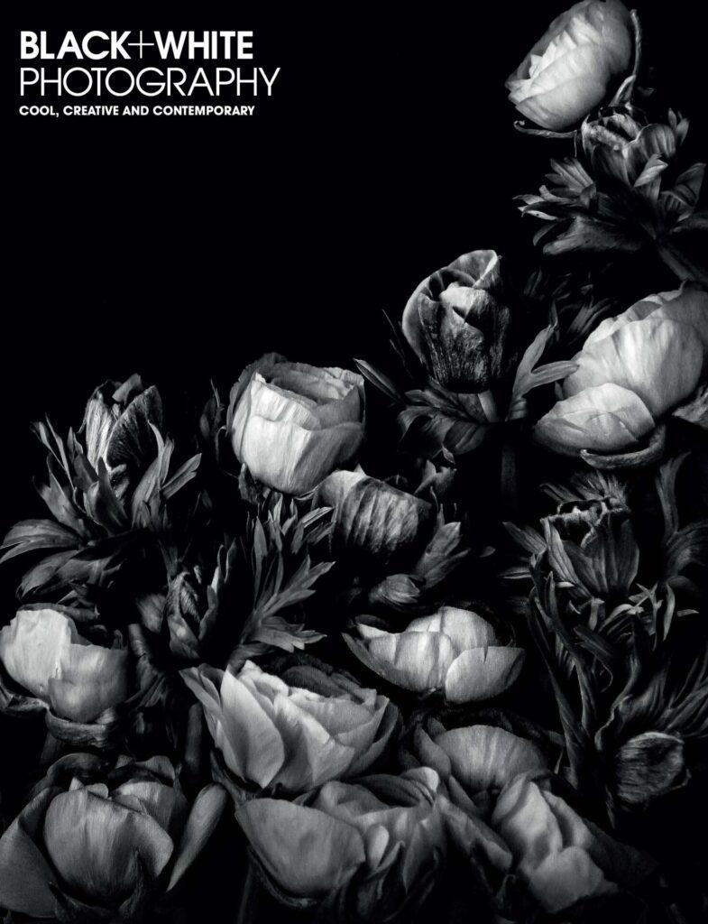 Black White photography 251